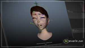 Cheek Puff Rigging Lecture Image